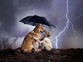 Child And Dog Under An Umbrella. Weather, Hurricane, Lightning Shining. Concept Protection, Reliable poster