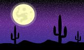Desert with cactus plants. Night