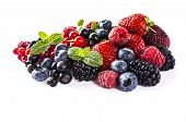 Mix Berries Isolated On A White. Ripe Blueberries, Blackberries, Raspberries, Currants And Strawberr poster