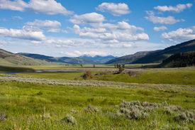 pic of lamar  - Lamar Valley in Yellowstone National Park Wyoming - JPG