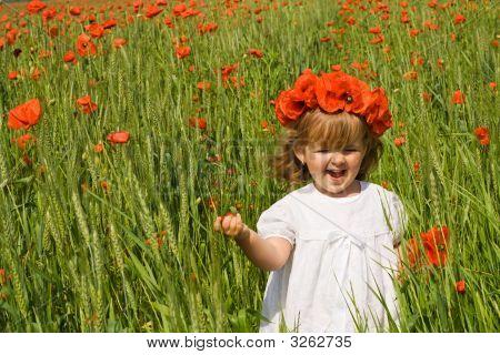 Running On The Poppy Field