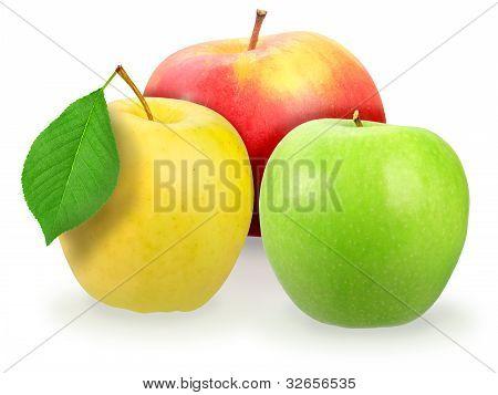 Three Fresh Motley Apple