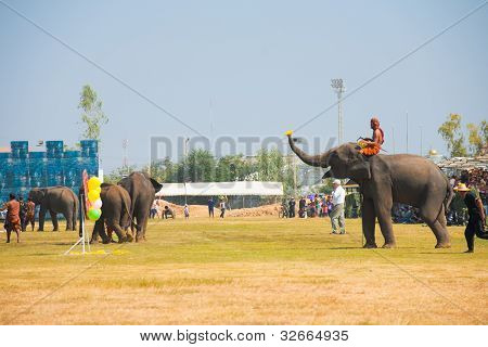 Elephant Playing Darts Balloons Side