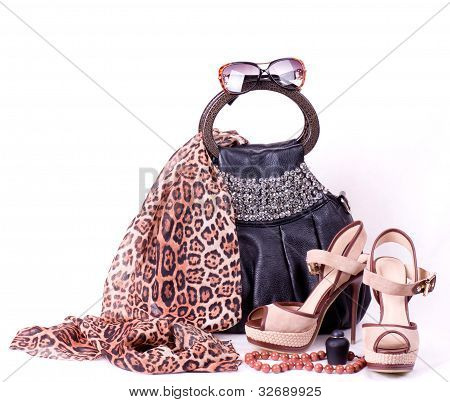 Sexy fashion clothing, footwear and accessories on a white background
