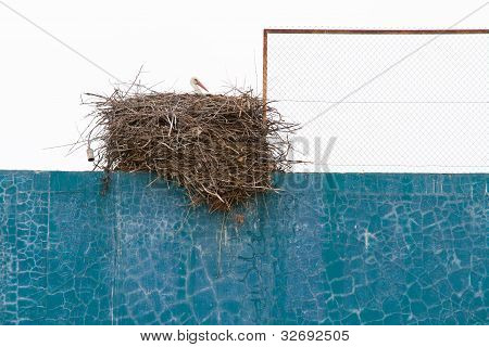 Stork nest over fronton wall