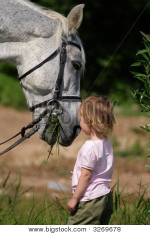 Little Girl And Big Horse'S Head Eating Grass