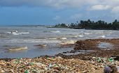 Sea Pollution: Garbage Dumped In The Sri Lankan Sea Near Colombo. Women Collects Plastic Things In A poster