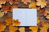 Wallpaper For September 1. Autumn Leaves With Notebook On Wooden Background With Copy Space. poster