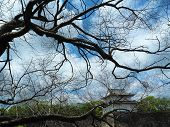 History And Heritage Of Japan,osaka Castle, Tourist Destination, Sightseeing poster