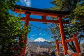 Chureito Pagoda And Mt. Fuji In The Spring Time With Cherry Blossoms At Fujiyoshida, Japan. Mount Fu poster