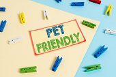 Writing Note Showing Pet Friendly. Business Photo Showcasing Used To Describe A Place That Is Suitab poster