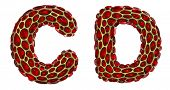 Realistic 3D letters set C, D made of gold shining metal letters. Collection of gold shining metalli poster