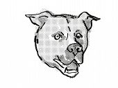 Retro Cartoon Style Drawing Of Head Of An American Staffordshire Terrier  , A Domestic Dog Or Canine poster