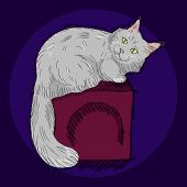 Cute Furry Sitting Maine Coon Cat, Beautiful Wooly Isolated Pet, For Cards, Prints, Banners Or Veter poster