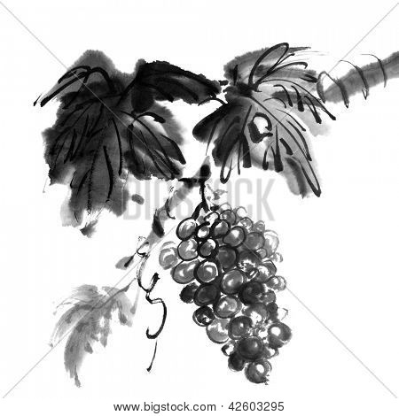 Chinese traditional ink painting, grapes on white background.