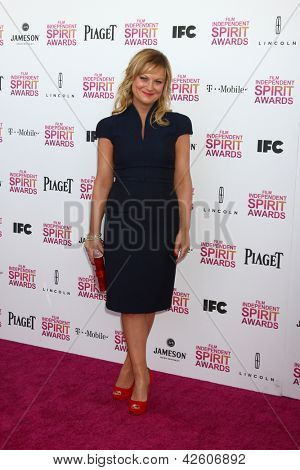 LOS ANGELES - FEB 23:  Amy Poehler attends the 2013 Film Independent Spirit Awards at the Tent on the Beach on February 23, 2013 in Santa Monica, CA