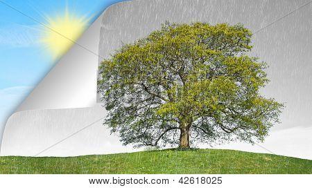 concept rain vs sun