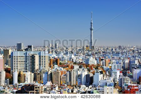 The Tokyo Sky Tree towers above the dense skyline of Tokyo, Japan.