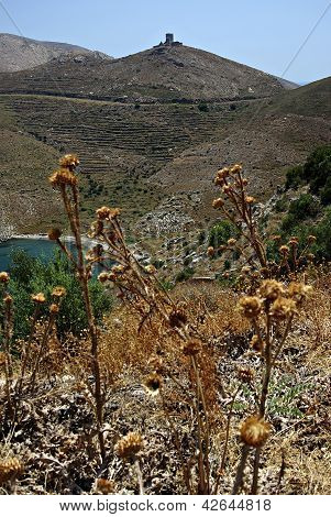 Vathia Landscape