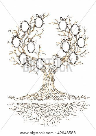 Vector Graphic Genealogical Branchy Tree