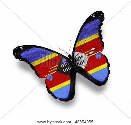 Flag Of Swaziland Butterfly, Isolated On White