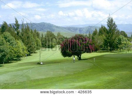 Mexican Golf Course