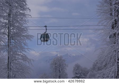 A Ropeway Over The Trees