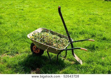 Wheelbarrow On Lawn