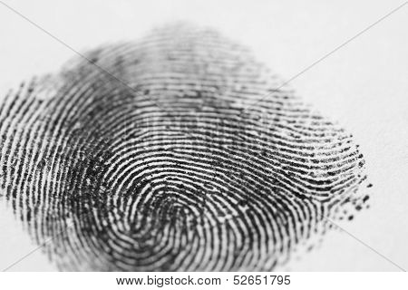 Black Fingerprint