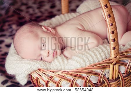 Newborn Baby Sleeps In Basket