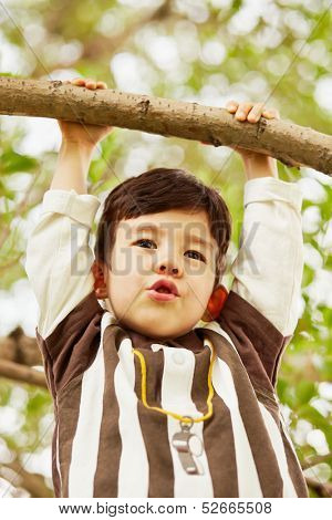 Closeup portrait of little boy who hang on branch grasping at it with hands