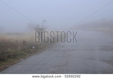 Heavy Fog On The Road