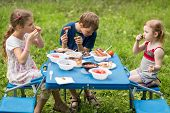 Three children eat meat with vegetables at the picnic on pembroke table
