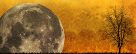 image of drakula  - Halloween background in the night with a full moon in the background - JPG