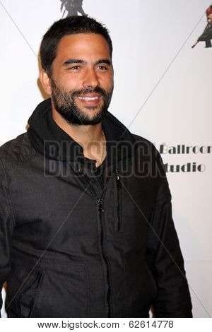 LOS ANGELES - MAR 31:  Ignacio Serricchio at the LA Ballroom Studio Grand Opening at LA Dance Studio on March 31, 2014 in Sherman Oaks, CA