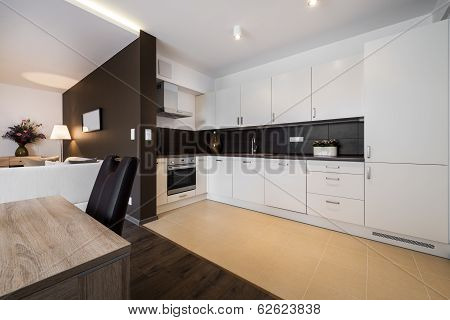 Modern Kitchen And Living Room