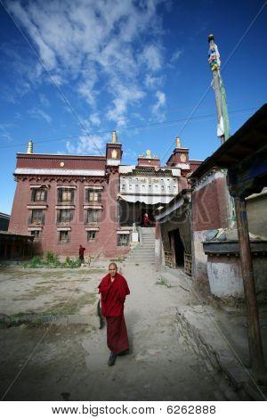 Two tibetan lama students