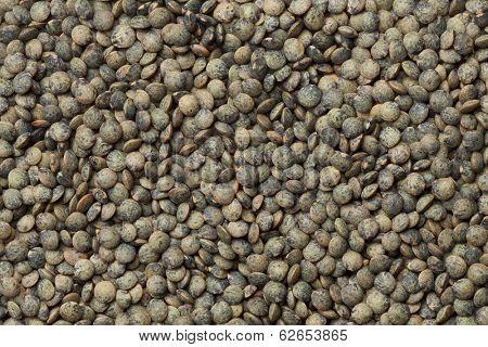 Du Puy lentils full frame