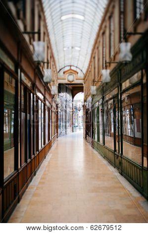Beautiful Parisian Shopping Gallery