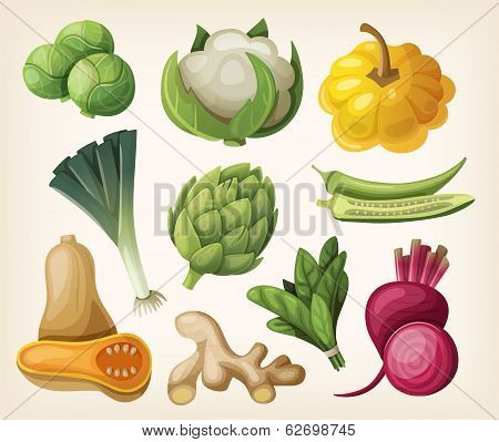 Set Of Exotic Vegetables