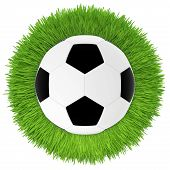 soccer ball on green grass lawn