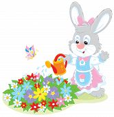 Easter Bunny watering flowers