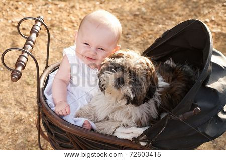 Baby And Puppy In Vintage Pram