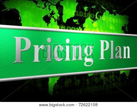 Pricing Plan Means Proposal Procedure And Idea