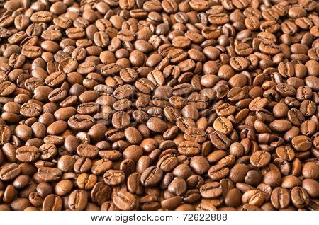 Roasted Whole Coffee Beans