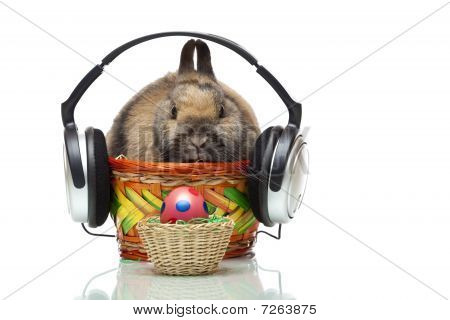 Easter Bunny Sitting In Basket With Headphone And Easter Egg
