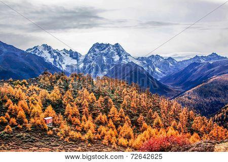 mountain autumn landscape