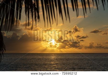 Sunset At Tropical Beach With Palm Leaves