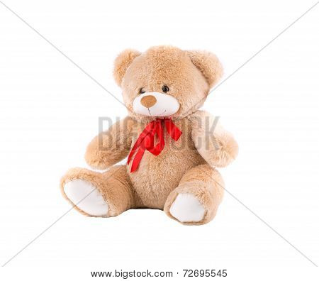 Classic teddy-bear with red bow.