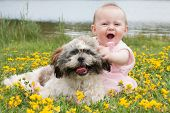 picture of buttercup  - Sweet baby girl and puppy in a field of buttercups - JPG